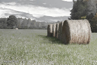 Photograph - Rolled Bales Of Hay  Vintage Art 1 by Lesa Fine