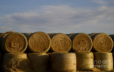 Soap Suds - Rolled Hay   #1056 by J L Woody Wooden