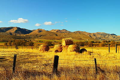 Hay October Photograph - Rolled Hay Near Durkee Oregon by Jeff Swan