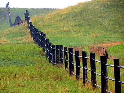 Photograph - Rolling Fence by Ramona Johnston