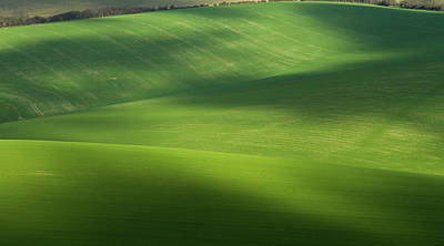 Photograph - Rolling Fields In South Downs National by © Chaitanya Deshpande