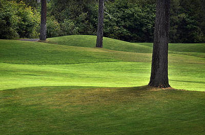 Photograph - Rolling Green Fairways by Dave Dilli