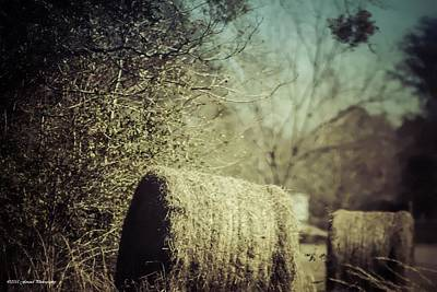 Photograph - Rolling Hay by Debra Forand