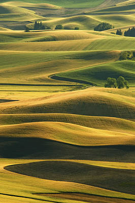Contour Farming Photograph - Rolling Hills Of The Palouse by Latah Trail Foundation