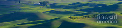 Photograph - Rolling Hills Pano by Idaho Scenic Images Linda Lantzy