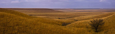 Photograph - Rolling Hills Pano by Scott Bean