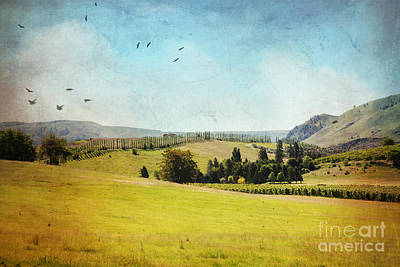 Rolling Hills Art Print by Sylvia Cook