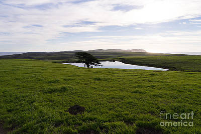 Contemplative Photograph - Rolling Landscape Hills Of Point Reyes National Seashore California Dsc2312 by Wingsdomain Art and Photography