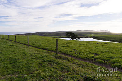 Contemplative Photograph - Rolling Landscape Hills Of Point Reyes National Seashore California Dsc2321 by Wingsdomain Art and Photography