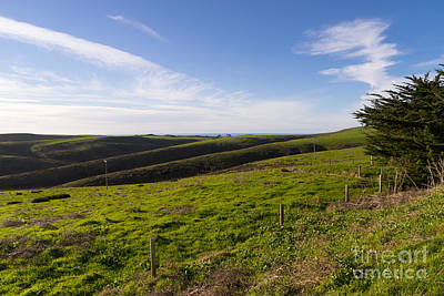 Photograph - Rolling Landscape Hills Of Point Reyes National Seashore California Dsc2411 by Wingsdomain Art and Photography