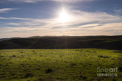 Contemplative Photograph - Rolling Landscape Hills Of Point Reyes National Seashore California Dsc2426 by Wingsdomain Art and Photography