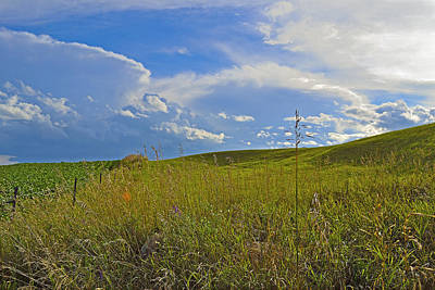Photograph - Rolling Pasture by Joshua McCullough