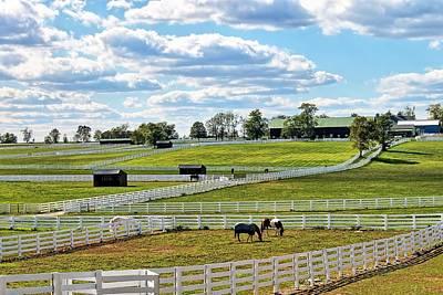 rolling pastures of Lexington Original by Terri Latham