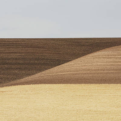Photograph - Rolling Wheat Fields, In The State Of by Mint Images - Paul Edmondson