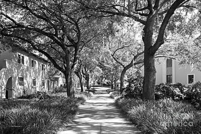 Rollins College Landscape Art Print by University Icons