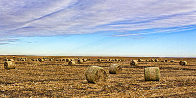 Photograph - Rolls Of Hay by Bill Kesler