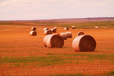 Andscape Photograph - Rolls Of Hay by Jeff Swan