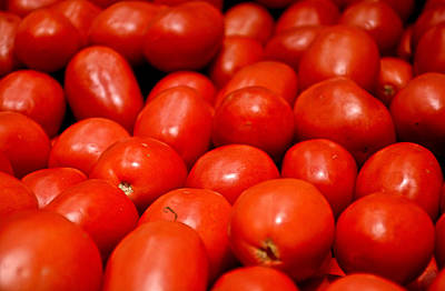 Photograph - Roma Tomatoes by Robert Meyers-Lussier