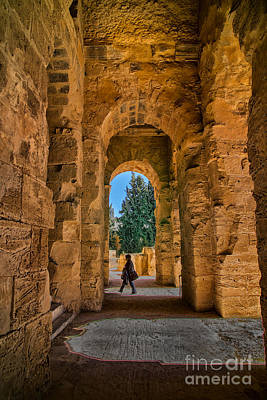 Photograph - Roman Colleseum by Rick Bragan