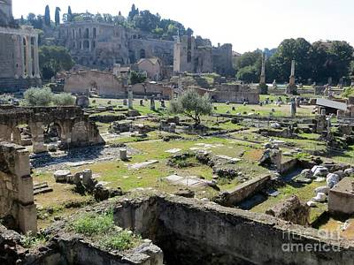 Photograph - Roman Forum by Tim Townsend