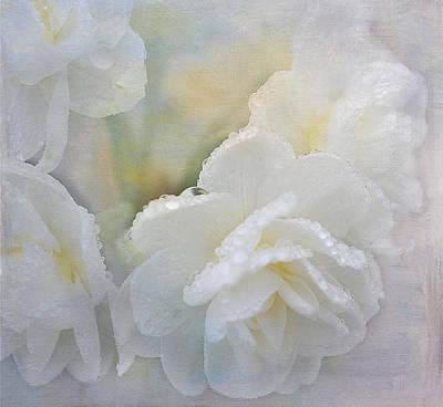 Romance In White Art Print