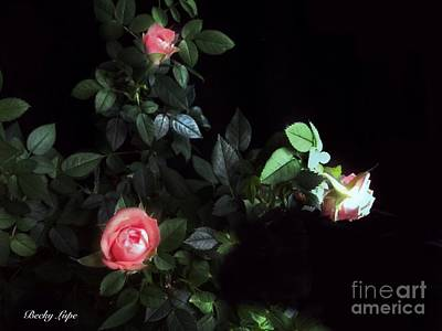 Photograph - Romance Of The Roses by Becky Lupe