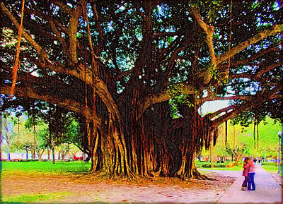 Photograph - Romance Under The Banyan Tree by Ginny Schmidt