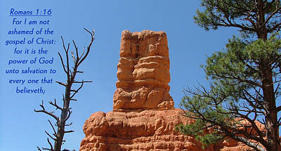 Bryce Canyon N. P. Romans 1-16 Print by Nelson Skinner