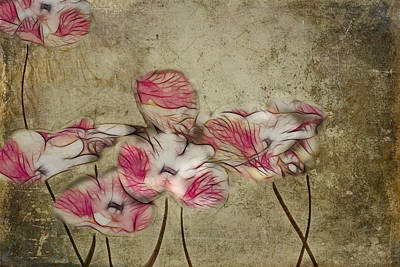 Pink Flowers Digital Art - Romantiquite - 01a by Variance Collections