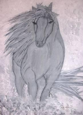 Romeo The White Stallion Art Print