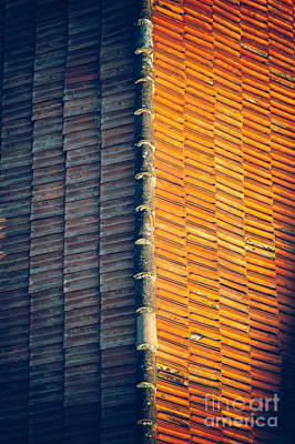 Photograph - Roof Tiles by Silvia Ganora