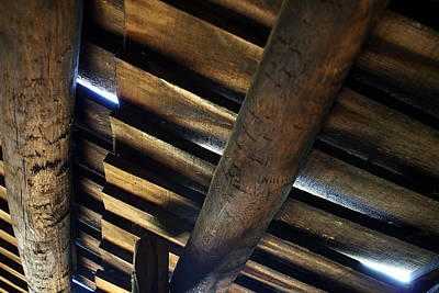 Photograph - Roofage by Leeon Photo