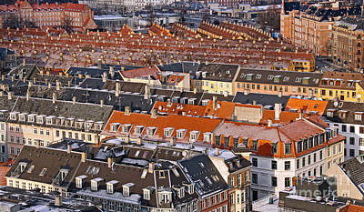 Photograph - Roofs Of Copenhagen by Inge Riis McDonald