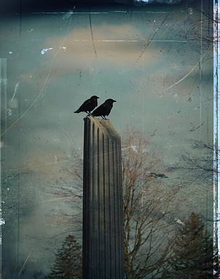 Two Crows Photograph - Room For Two Crows On A Column  by Gothicrow Images