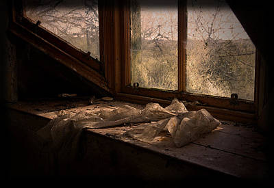 Photograph - Room With A View by Liz  Alderdice
