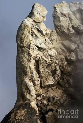 Roosevelt Geyser Art Print by Adam Jewell