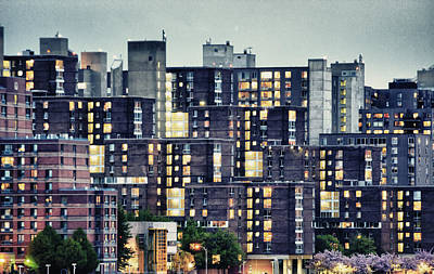Photograph - Roosevelt Island Boxes by Dave Beckerman