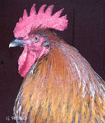 Painting - Rooster Watercolor by George Pedro