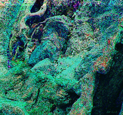 Digital Art - Roots And Rocks by Stephanie Grant