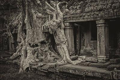 Roots In Ruins 7, Ta Prohm, 2014 Art Print by Hitendra SINKAR