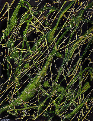 Painting - Roots by Shabnam Nassir