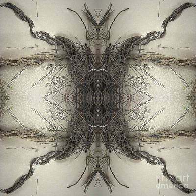 Roots Two Art Print by Carina Kivisto