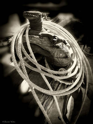 Photograph - Rope And Saddle by Lucinda Walter