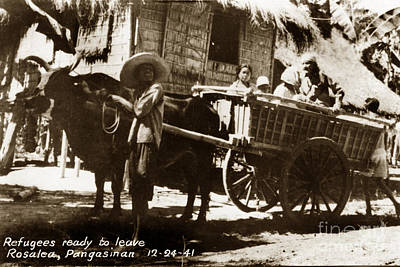 Photograph - Rosales Pangasinan Philippines Refugees Leaving In Ox Cart 12-24-1941 by California Views Archives Mr Pat Hathaway Archives