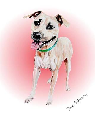 Animal Shelter Drawing - Roscoe - A Former Shelter Sweetie by Dave Anderson