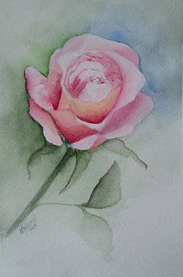 Rose 1 Art Print by Nancy Edwards