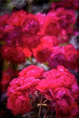 Rose 134 Art Print by Pamela Cooper
