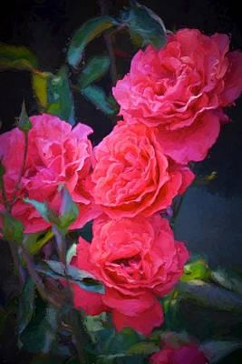 Rose 138 Art Print by Pamela Cooper
