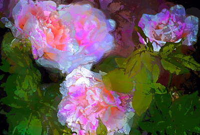 Rose 184 Art Print by Pamela Cooper