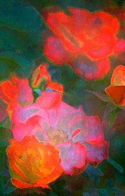 Rose 187 Art Print by Pamela Cooper